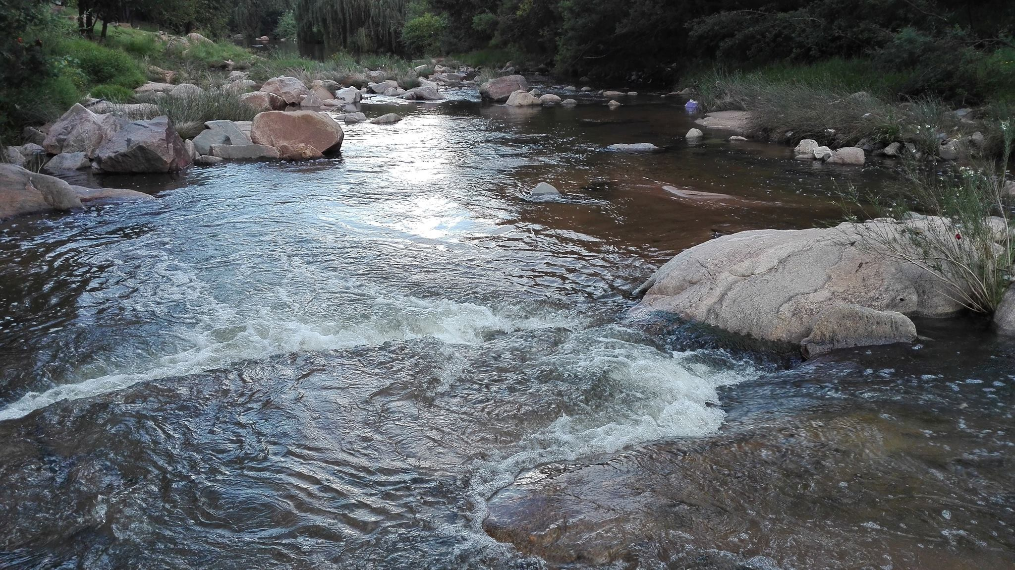 Sewage contaminated rivers; Gauteng's rivers are dying